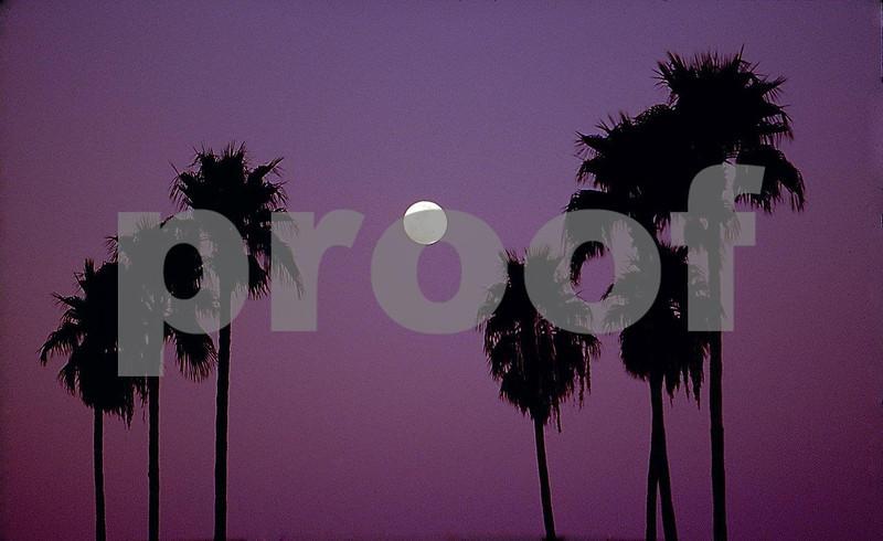 Scottsdale, AZ moonrise.jpg