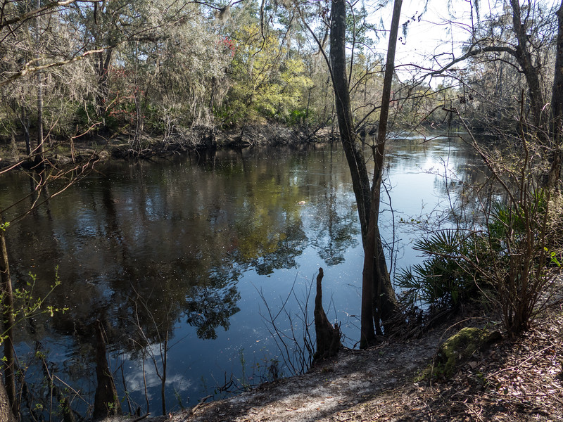 02-21--2019 Oleno River Trail (24 of 28).jpg