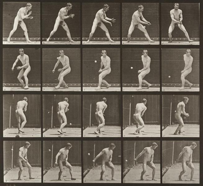 Nude man in a baseball error (Animal Locomotion, 1887, plate 288)