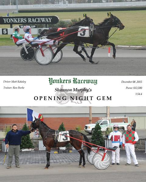 12082015 Race 3-Opening Night Gem.jpg