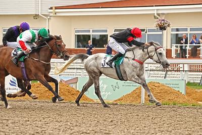 5 Wathba Stallions (41-65) Hcp 1m