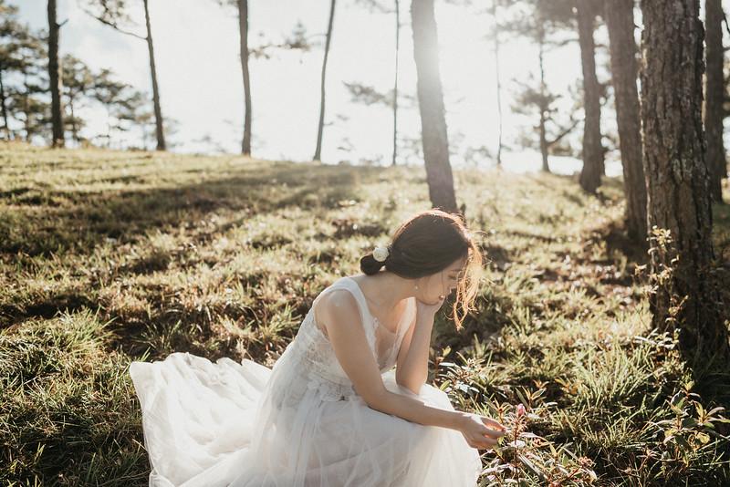 Carmen & Chester Pre Wedding Dalat Mui Ne-39246.jpg