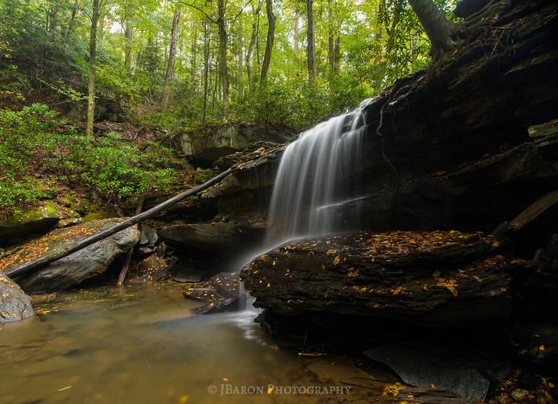 Lower Jonathan Run Falls 1230