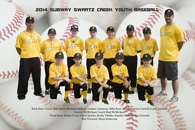 Subway Swartz Creek Youth Baseball 2014