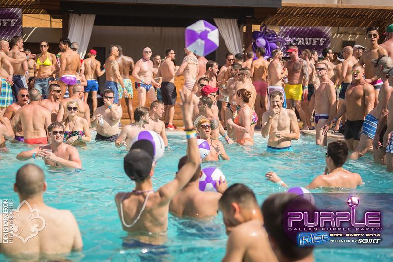 2014-05-10_purple06_658-3255136568-O.jpg