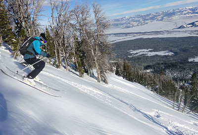 Old friends finding fresh tracks