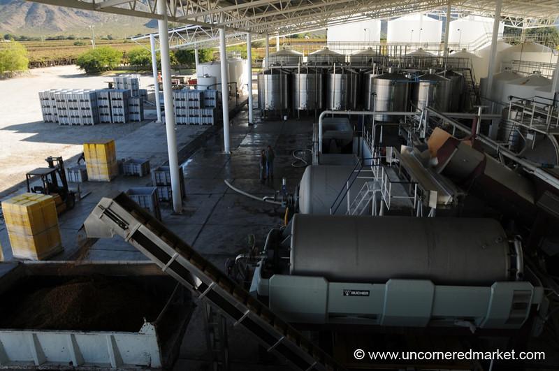 Modern Facilities at Etchart Winery - Cafayate, Argentina