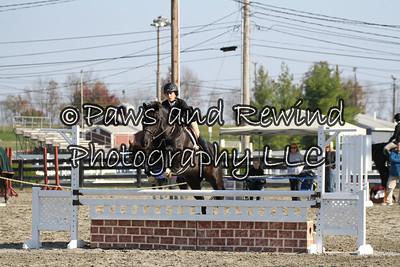 Ring II:  Children's Hunter Horse and Pony