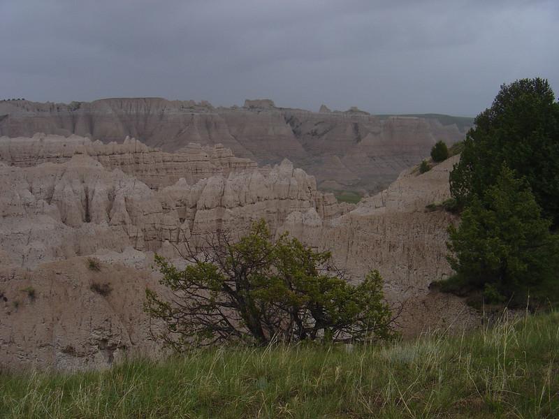 Yellowstone & Mt. Rushmore 012.jpg