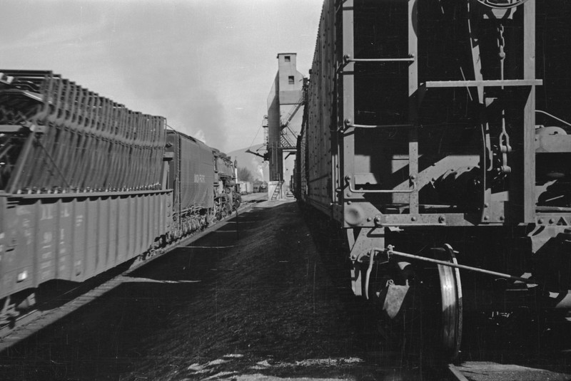 UP_4-8-8-4_4009-with-train_Echo_Aug-1946_002_Emil-Albrecht-photo-205-rescan.jpg