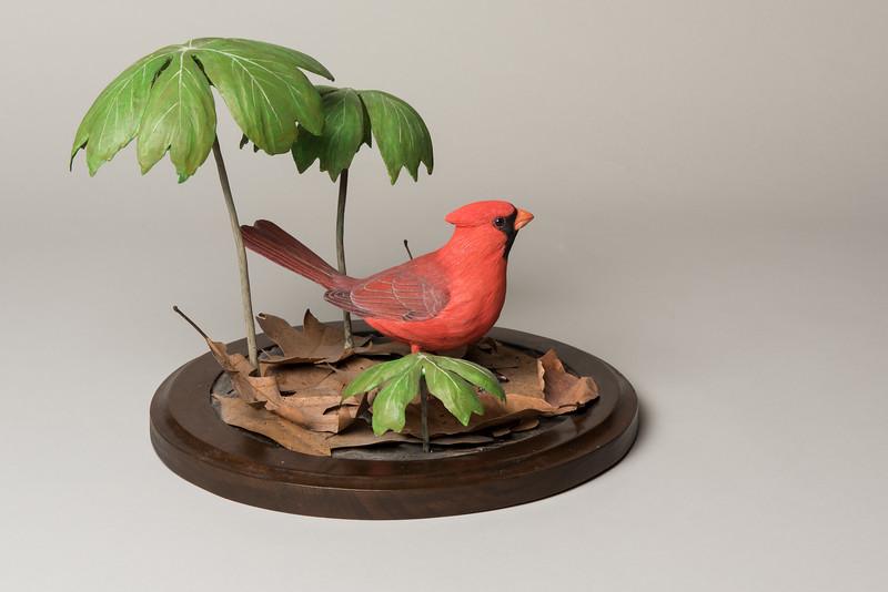 Still Life Dan Holman Birds (13 of 50).jpg