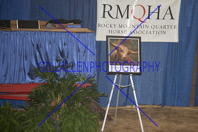 2015 NWSS Horse Auction