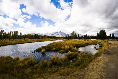 Yellowstone/Grand Tetons 2016