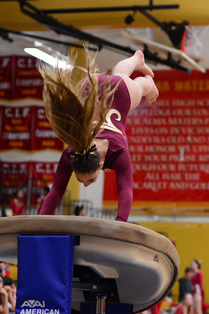 Vault, Mt Carmel Meet, 4-23-15