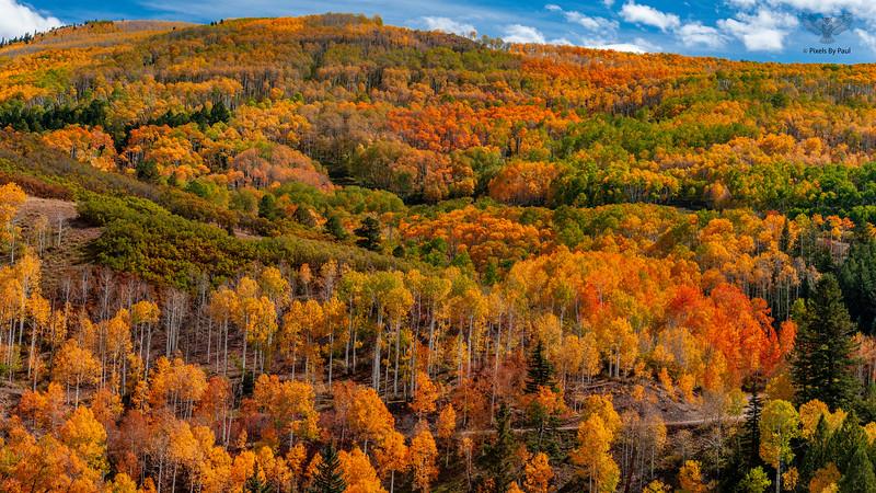 000667 Colorful Colorado 16x9.jpg