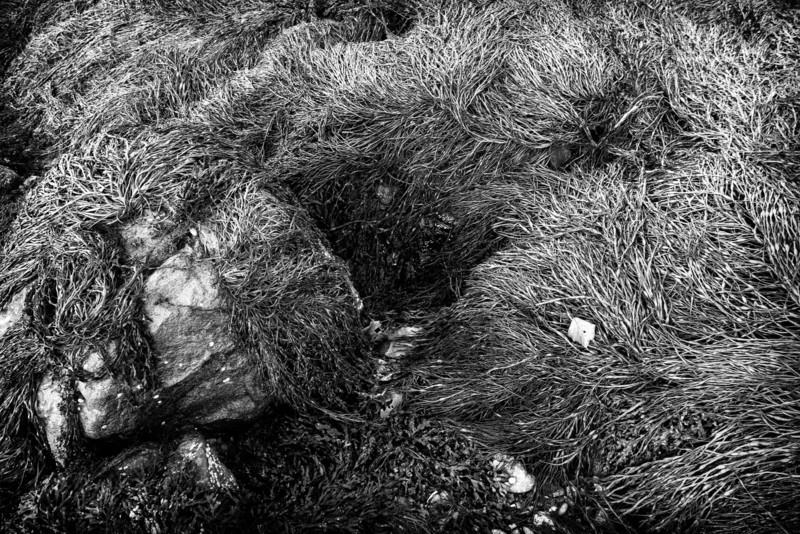20121013-ellsworth-06779-Edit-Edit.jpg