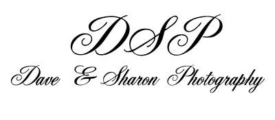 logo Dave & Sharon-1.jpg