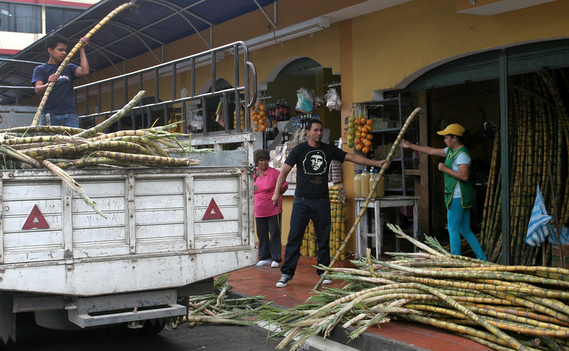 These guys are delivering sugar cane.