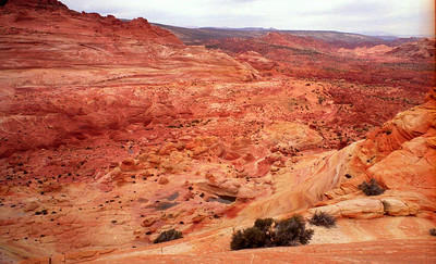 Top Rock - Coyote Buttes