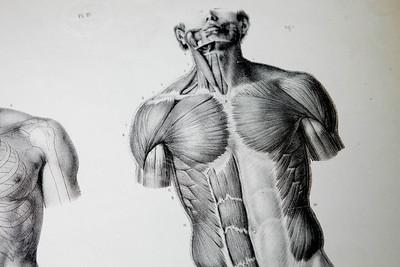 30247 hsc medical images