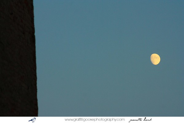 July moon ~ 2011