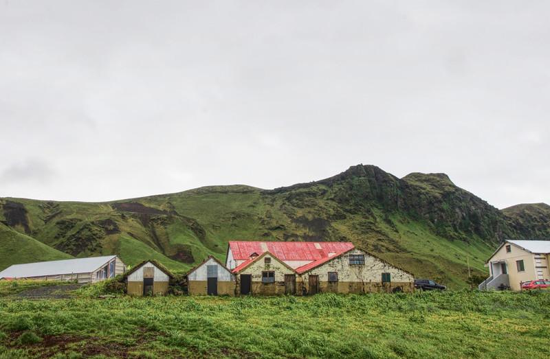 Iceland_Heather 4225.jpg