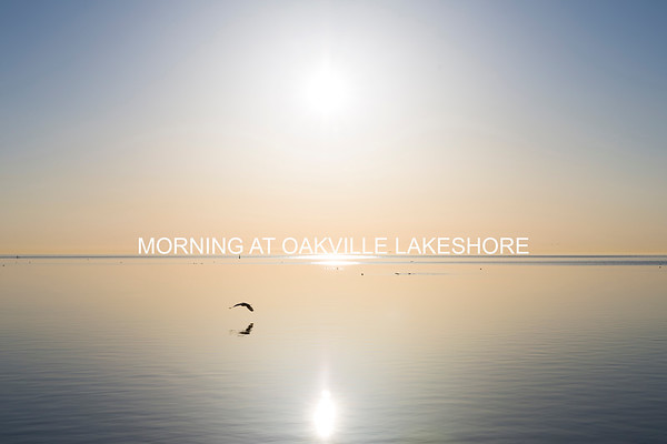 Morning at Oakville Lakshore