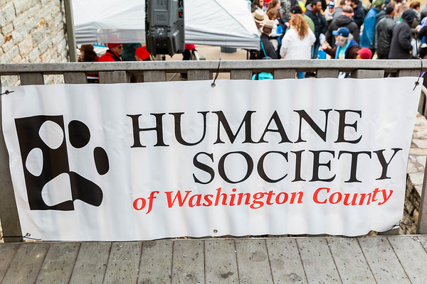 Humane Society of Washington County Polar Plunge