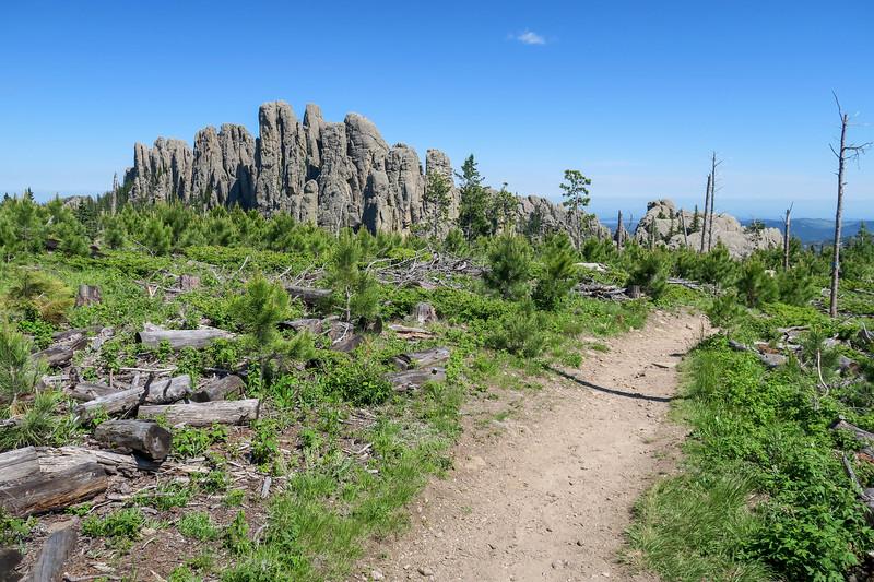 Little Devils Tower/#4B Trail -- 6,740'