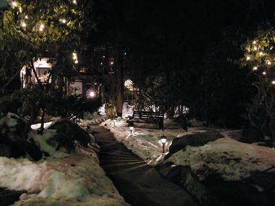 Moonlit Fire, Stonehedge Garden, South Tamaqua (2-28-2010)