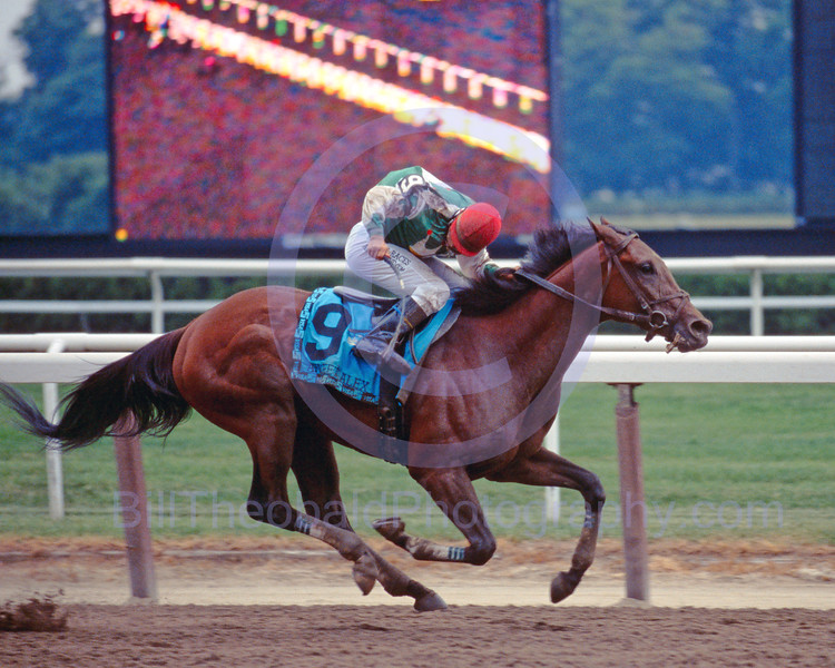 Afleet Alex & Jeremy Rose on their way to victory in the 2005 Belmont Stakes.