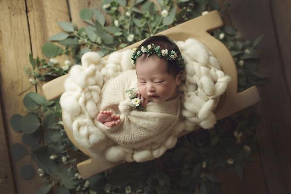 frida newborn mini