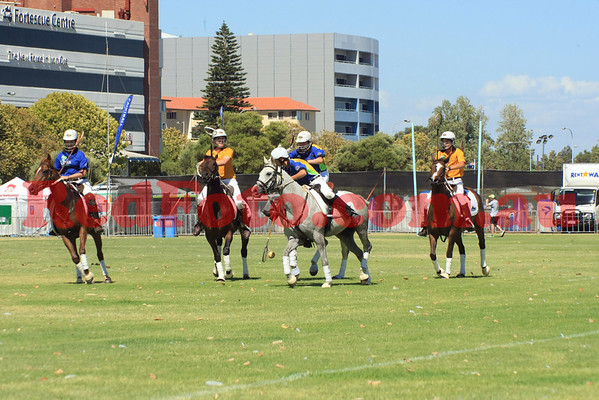 2014 01 26 PoloCrosse by the River Australia Day Gav