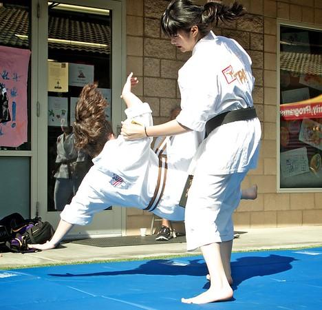 Shorin Ryu Demo