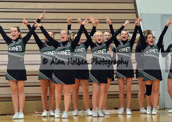 Cheer at LCC - Williamston varsity - Round 3 - Jan 25