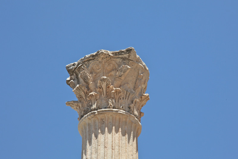 Ephesus  2474.jpg