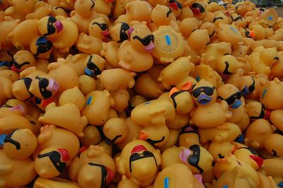 Dublin Rubber Ducky Derby