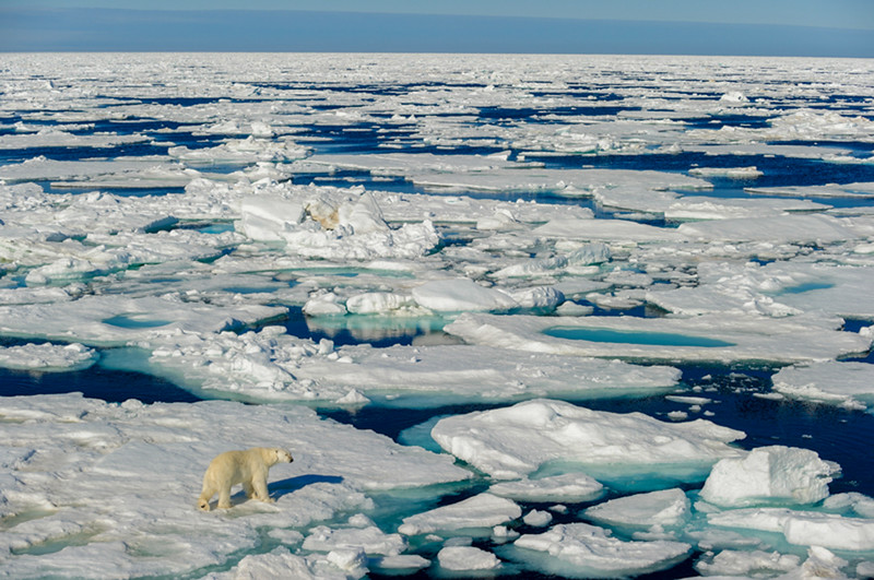 north-pole.jpg