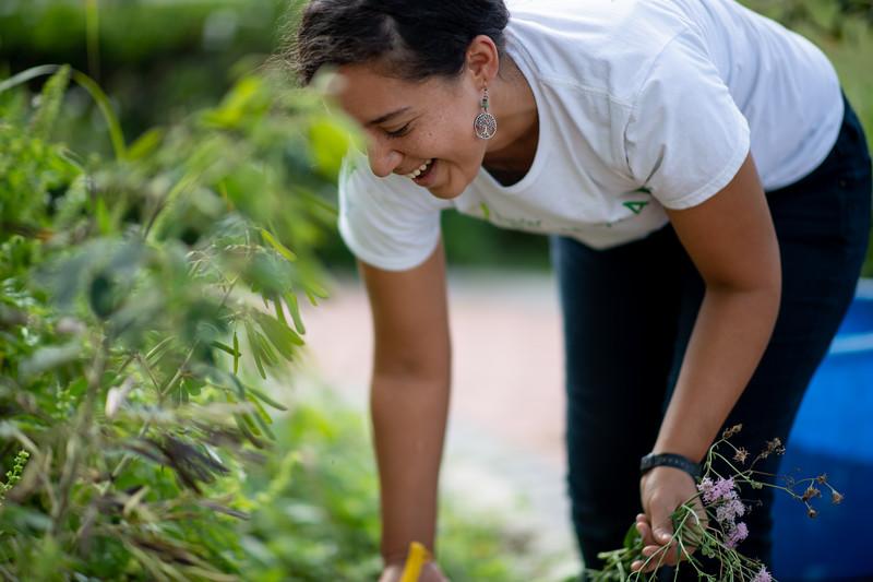Melissa Zamora stops by the Islander ECDC Garden.