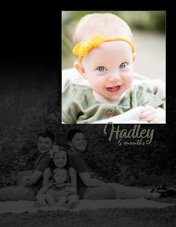 Hadley 6 Months