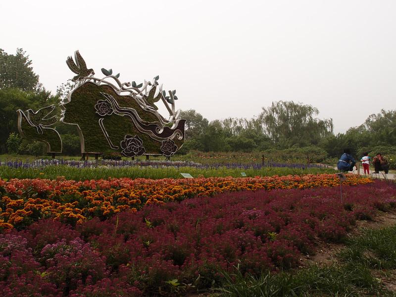 20120513_1307_0321 北京植物园 Beijing Botanical Gardens, rose garden entrance (Beijing time 1307)