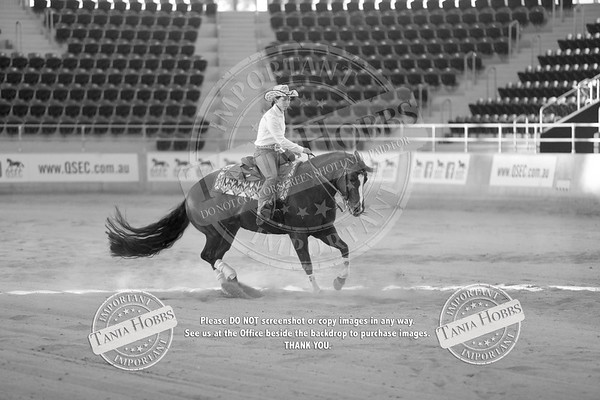 QLD REINING STATE SHOW 2017