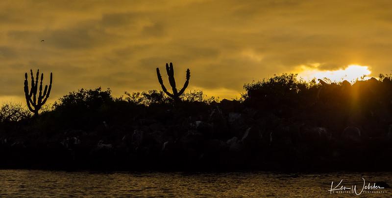 2018 Lobos Island-47.jpg