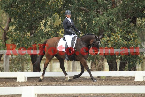 2014 10 11 SVDA Boutique Dressage Medium Competitive Pony