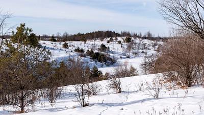 Forks of the Credit Provincial Park 2021