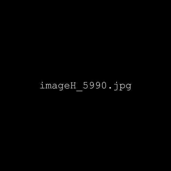 imageH_5990.jpg