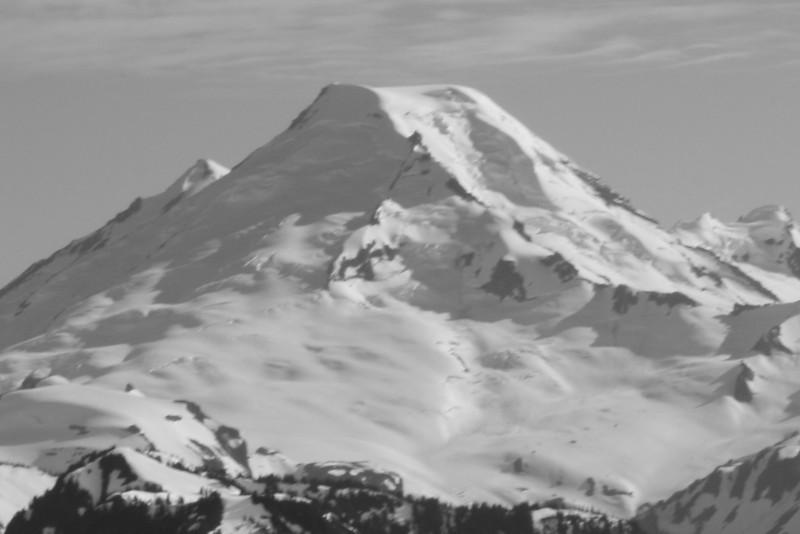 Mt Baker, 'Great white watcher'.