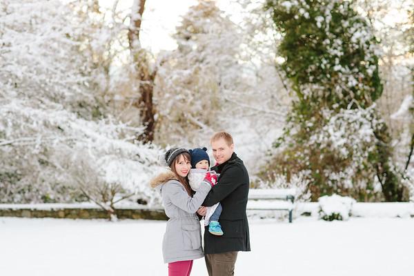 The Albert Family Christmas