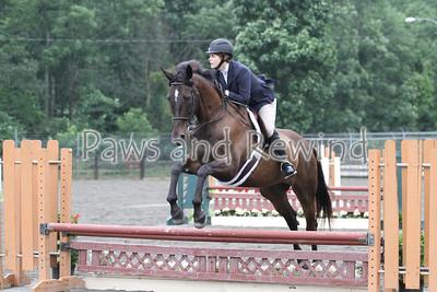 Ring III: Low Adult Equitation/Hunter