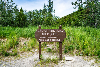 Denali National Park 2016